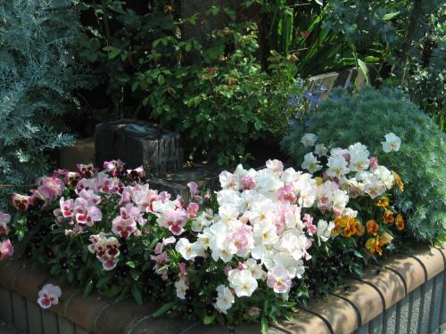 garden+020_convert_20090501114849.jpg