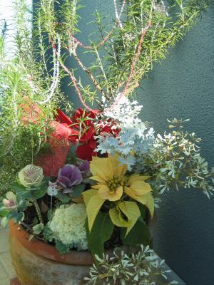 garden+021_convert_20081219232320.jpg