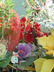 garden+023_convert_20081219232559.jpg