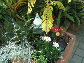 garden+025_convert_20081219230810.jpg