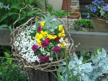 garden+025_convert_20090401030227.jpg
