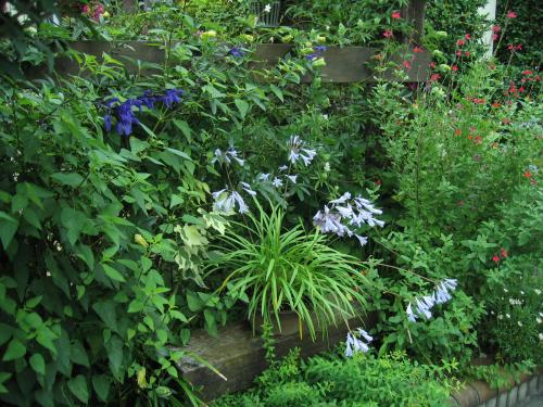南面花壇 季節の鉢