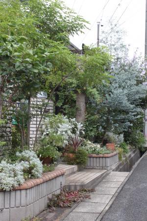 西側からの庭