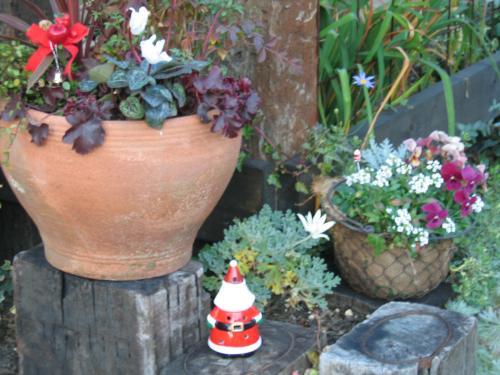 garden+093_convert_20081219225230.jpg