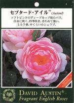 garden001_convert_20090216141846.jpg
