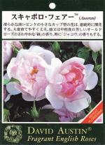 garden002_convert_20090216143131.jpg