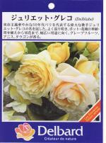 garden005_convert_20090216145928.jpg