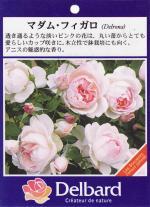 garden006_convert_20090216153129.jpg