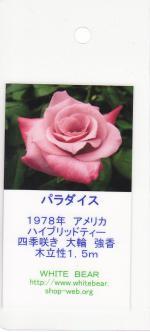 garden007_convert_20090216151924.jpg
