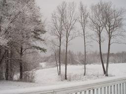 雪2009年3月