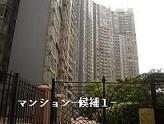 koushuu2_20090825154234.jpg
