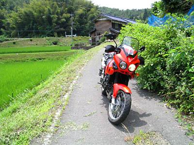 kyo_r75-1.jpg