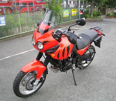 tiger955i.jpg
