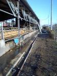 牛舎の風除け2