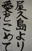 屋久島より愛をこめて