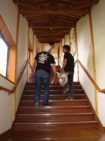 長い長い階段が続きます。