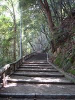 八幡宮 長い長い階段が続きます。