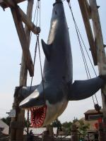 JAWS!!.jpg