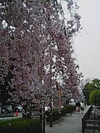 20060418170318
