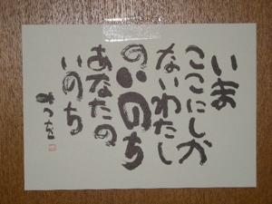 DSCN0147.jpg