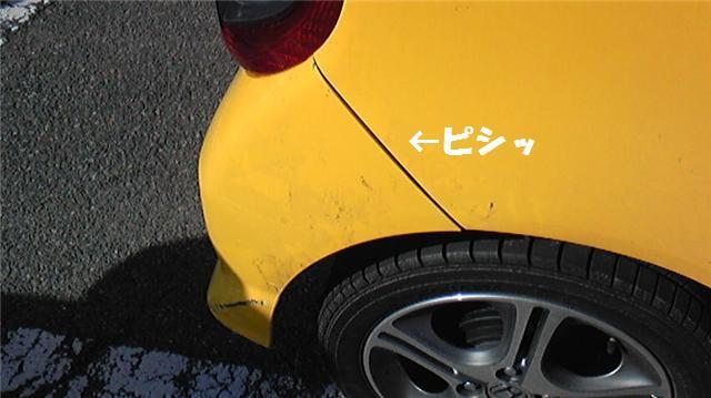 2_20090307080847.jpg