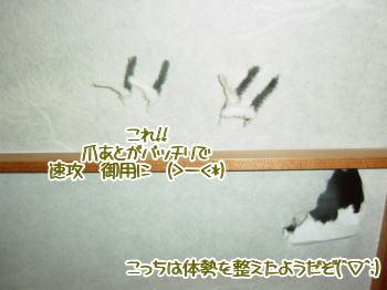 20040319.jpg
