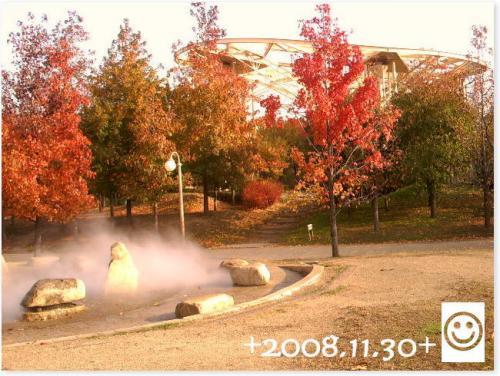 20081130e.jpg