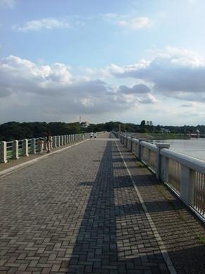 狭山湖の遊歩道