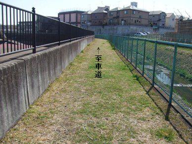 お散歩スペース