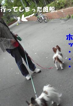 200905241511000.jpg