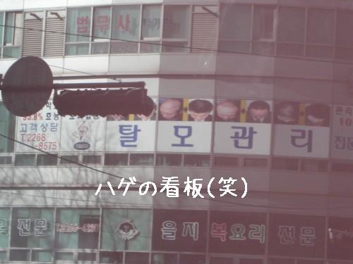 韓国版アートネーチャー?