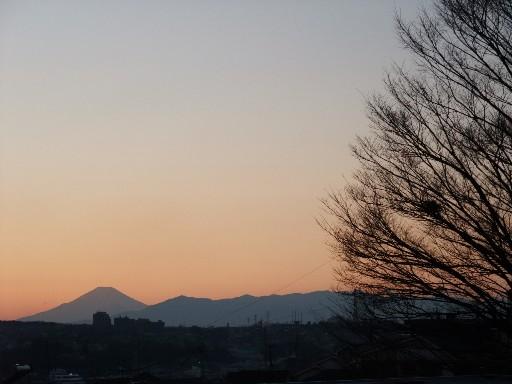0112fuji_ki.jpg
