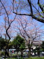 0410table_nagame3.jpg