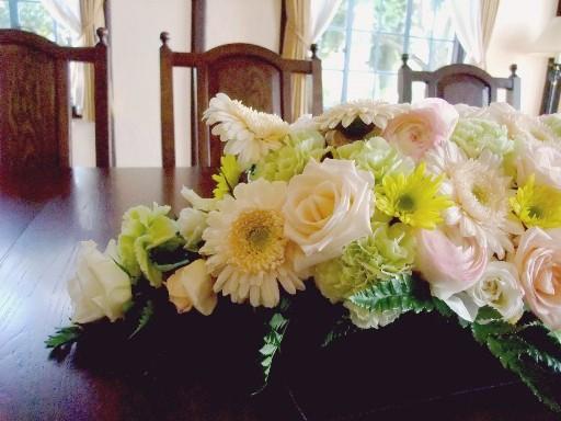 0415belic_flower1.jpg
