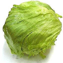 lettuce_safe20070228.jpg