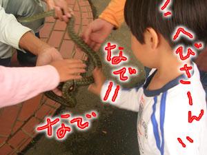 2007-09-24-2.jpg