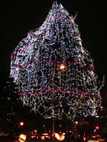 2007-12-23-2.jpg