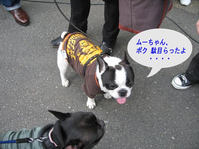 2008 02 16 (28)