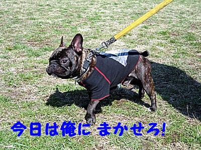 IMG_0095_1_1.jpg