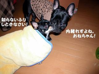 Img2006-01-11_0007.jpg