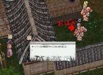 image1307.jpg