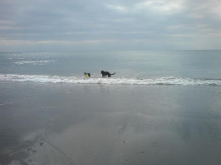 海にダイブする二人