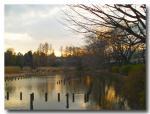 冬の公園-2-