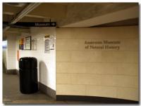 アメリカ自然史博物館-3-