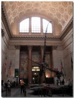 アメリカ自然史博物館-5-