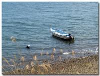 浜名湖-4-
