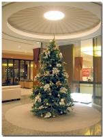 クリスマスツリー-1-