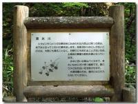 清水川-1-
