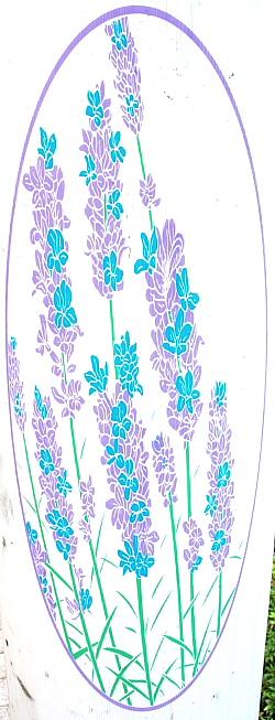 花の国表紙B