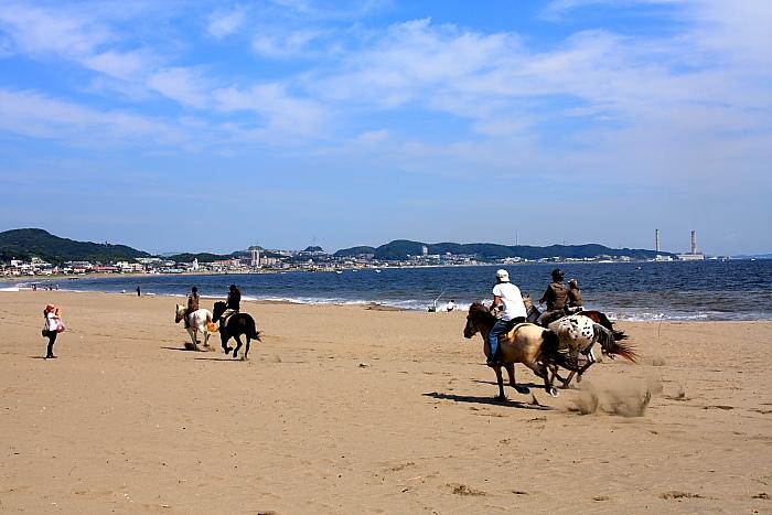 馬と海11
